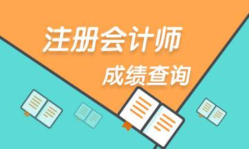 2020年贵州贵阳注册会计师成绩查询时间