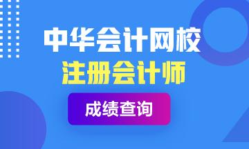 广州2020年注册会计师考试成绩查询时间