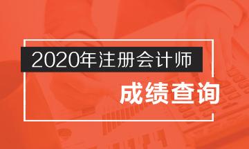 2020年内蒙古注册会计师成绩查询时间了解吗?
