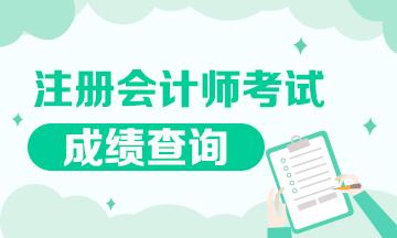 2020年西藏注册会计师成绩查询时间