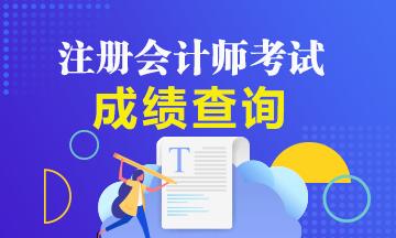 天津2020年注册会计师成绩查询时间是公布了吗?