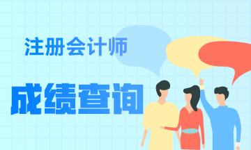 2020年贵州贵阳注册会计师成绩查询时间公布了吗?