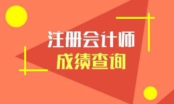 2020年湖南长沙注会成绩查询时间已经公布~