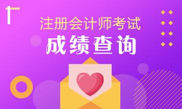 湖南2020年注册会计师考试成绩可以查了吗?
