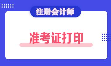 广西2021注册会计师考试准考证打印时间