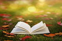 2021税务师《财务与会计》教材变化解读:删减100页
