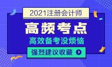 2021年注会《会计》第一章高频考点:会计要素