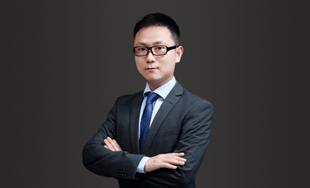 陆沛沛《全球战略与领导力(GSL)》
