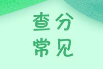上海2021中级会计师查分网站是哪个?