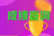 黑龙江绥化2021年初级会计职称查分网址是什么?