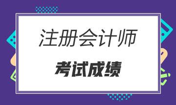 广东2021年注册会计师考试成绩查询时间