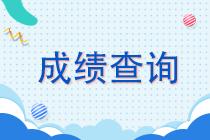 湖南衡阳注会考试成绩查询时间请查收!